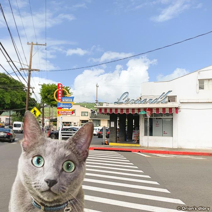 hawaii meow